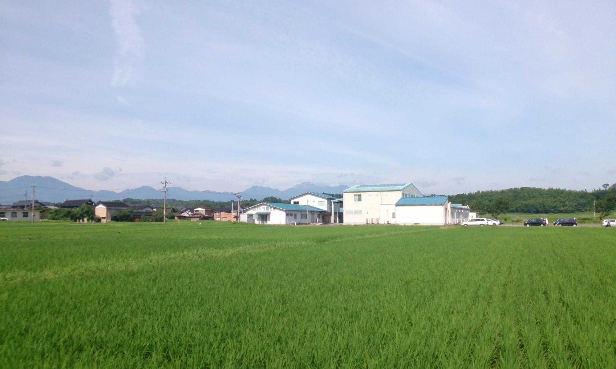 有限会社ミノハラ製作所